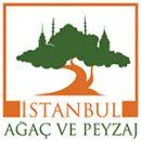 istanbul ağaç